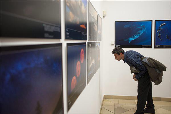 Kiállítás az Év Természetfotósa pályázat képeiből