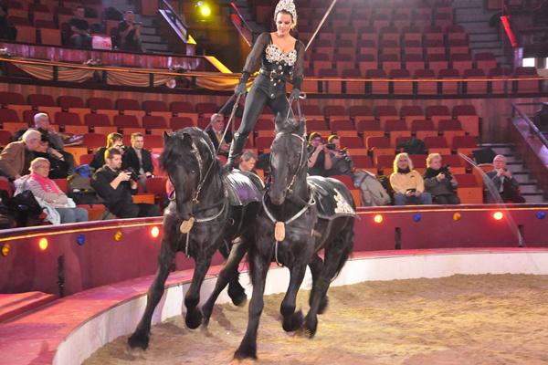 Magyar Cirkuszcsillagok a Fővárosi Nagycirkuszban