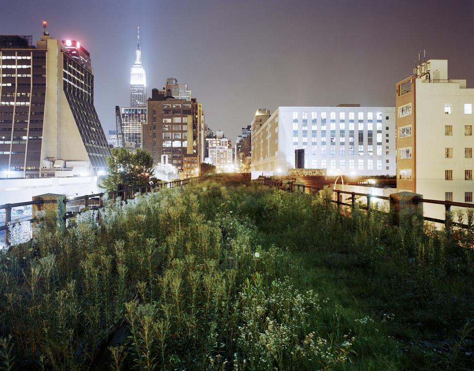 Több tízmillió dolláros magánadományokból épült park New York belvárosában, egy használaton kívüli vasúti felüljárón.