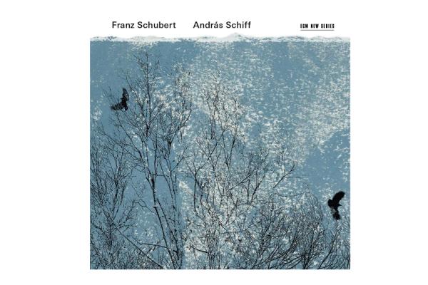 Schiff-Schubert