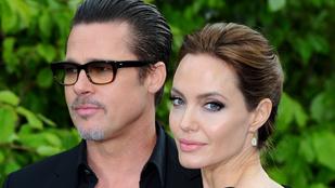 Brad Pitt pont egy éve vette el Angelina Jolie-t
