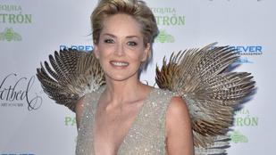 Sharon Stone fácánnak öltözve villantott lábat és bimbót