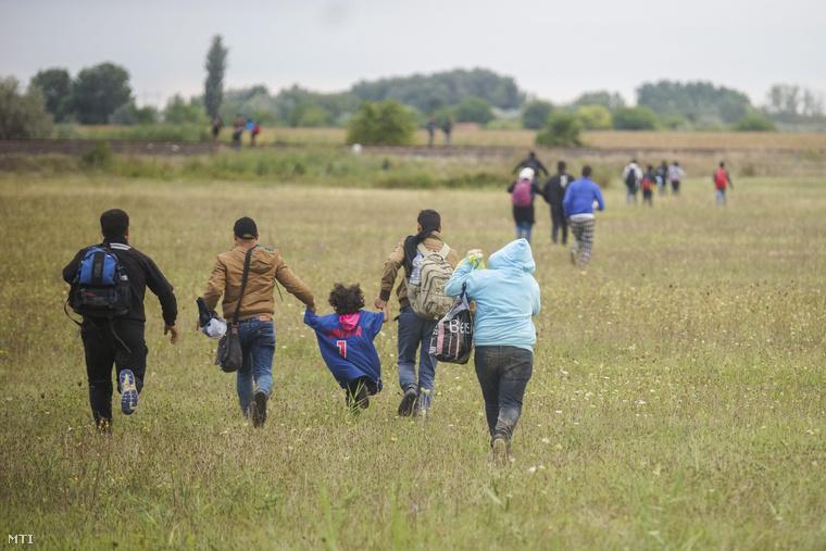 Menekültek a Röszke melletti vasúti átjáró közelében, augusztus 26-án.
