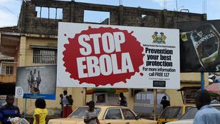Felépült az utolsó ebolás beteg is Sierra Leonéban