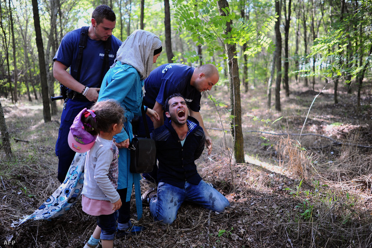 Rendőrök fognak el illegális határátlépőket Röszke közelében, 2015. augusztus 28-án.