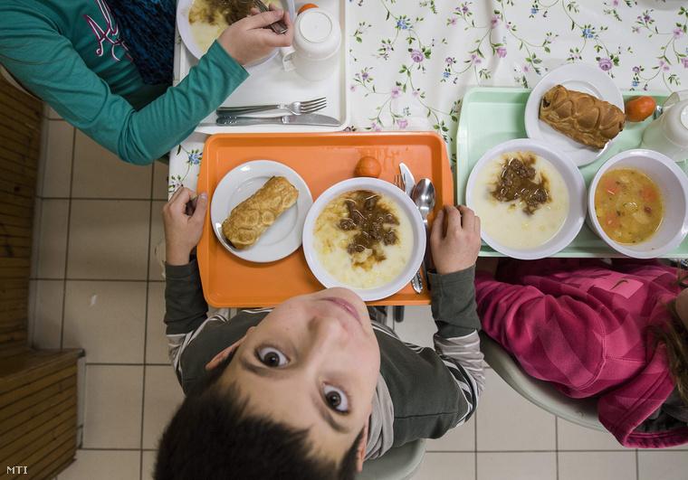 Index - Belföld - Kövér: Az akác súlyos történelmi tévedés