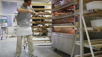 Legalább 10-15 százalékkal drágul a kenyér