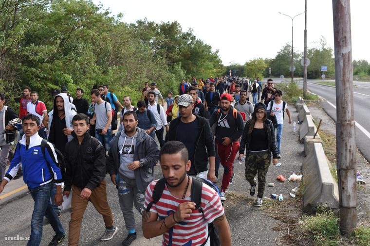 Menekültek gyalogolnak a hegyeshalmi vasútállomástól Ausztria felé.
