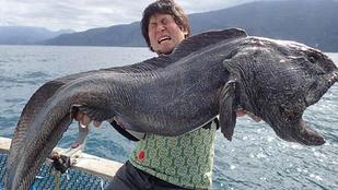 Bizarr szörnyeteget fogott egy japán halász
