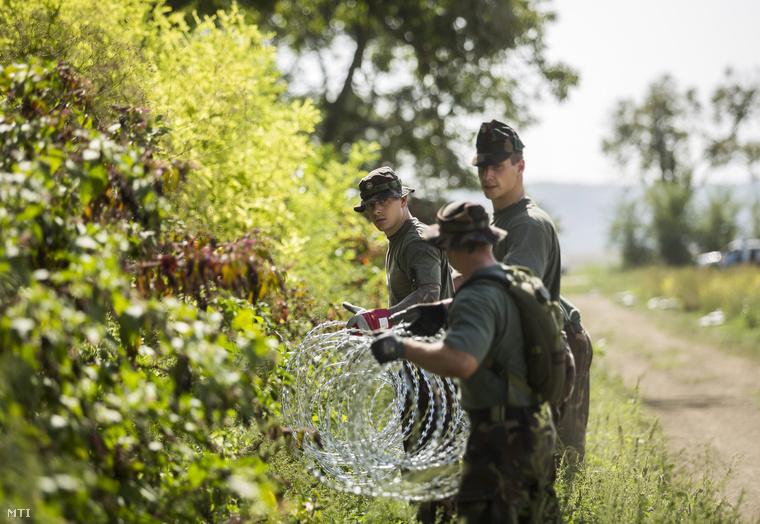 Katonák szögesdrótot helyeznek el a magyar-horvát határ magyarországi oldalán Sárok határában 2015. szeptember 18-án.