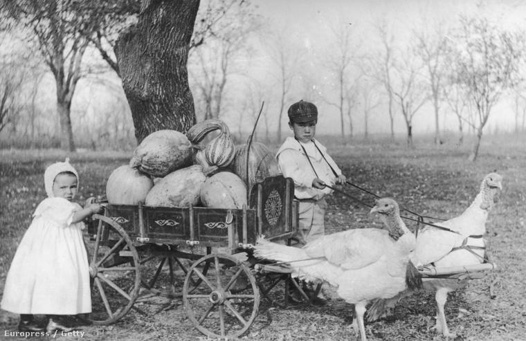 Ők már kiválasztották a megfelelőt (Kansas, 1840-es évek)