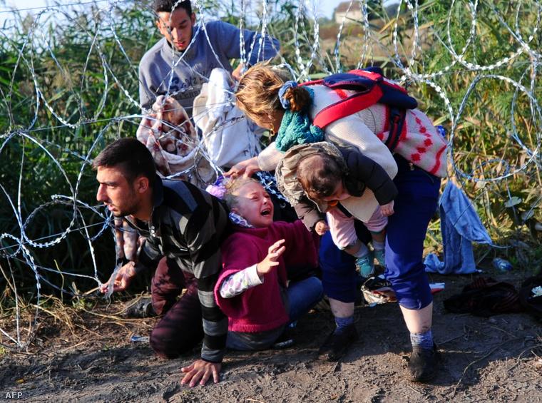 Menekültek próbálnak átjutni a drótkerítésen a szerb-magyar határon, Röszke közelében, 2015. augusztus 27-én.